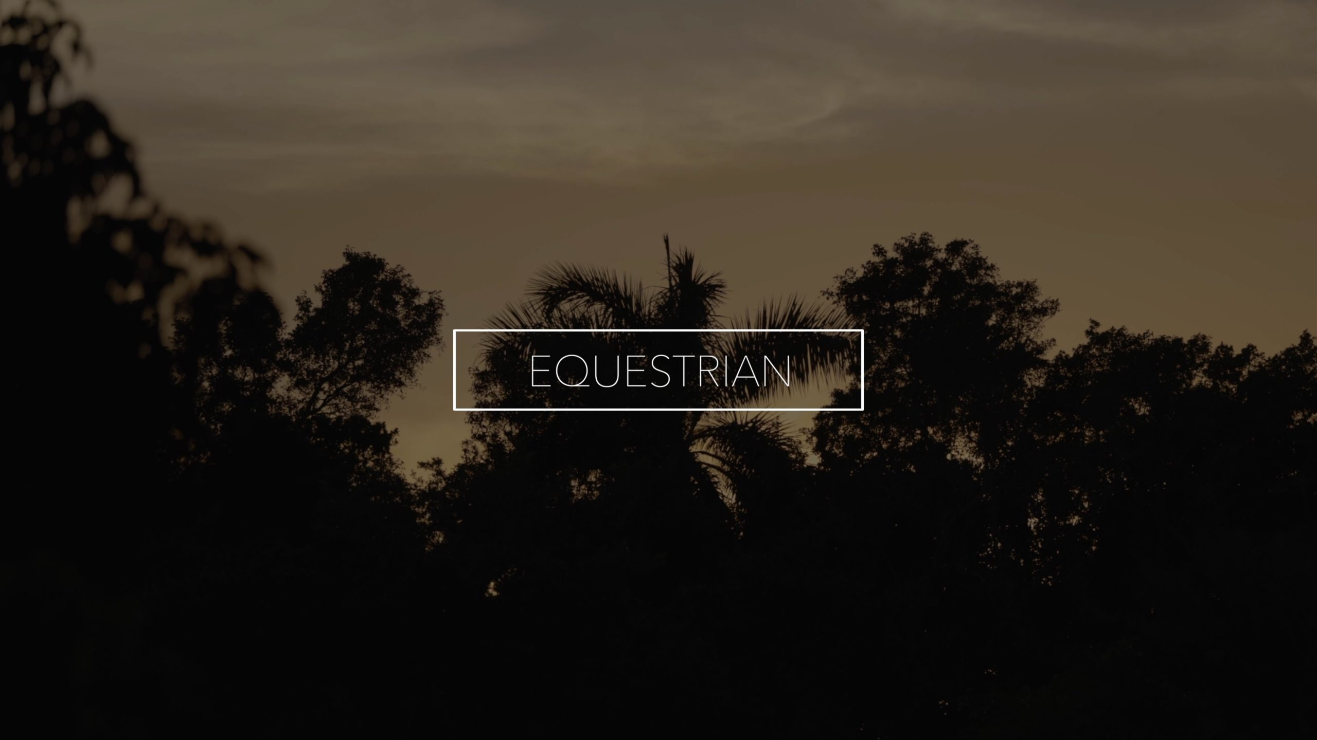 EQUESTRIAN SHOT ON A (CANON EOS R5 - 4K 120FPS)